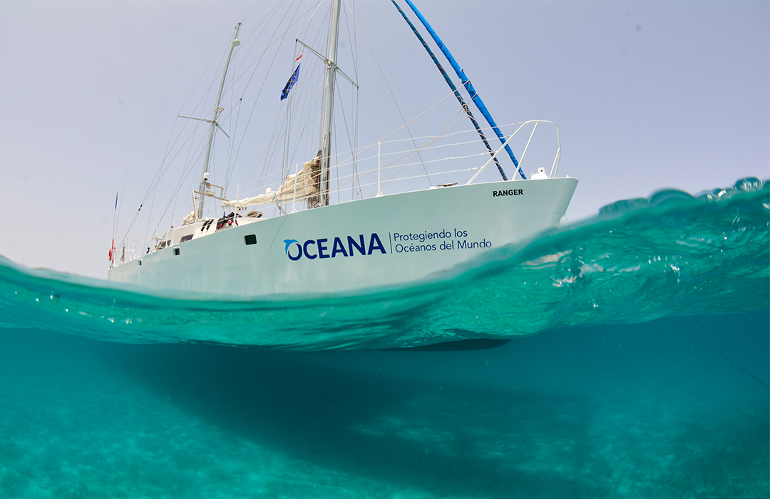 Blancpain y Oceana anuncian alianza para proteger los océanos